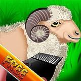 Wooly Sheep Shave : le jour où le berger tond l'agneau pour la récolte de la laine – gratuit