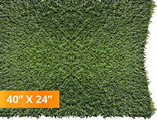 PZG 1-inch Artificial Grass Patch w/Drainage Holes & Rubber Backing   4-Tone Realistic Synthetic Grass Mat   Heavy & Soft Pet Turf   Lead-Free Fake Grass for Dogs or Outdoor Décor