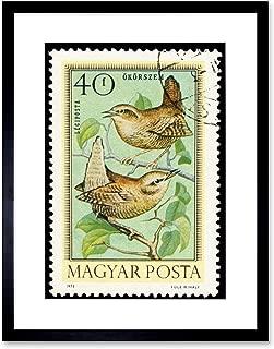 Postage Stamp Hungary 40 FORINT Bird Wren Jenny Framed Art Print Mount B12X11038