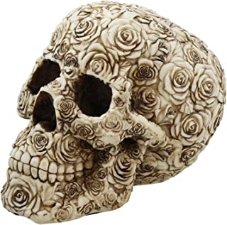 Best flower with skull Reviews