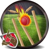 Hit The Wicket...