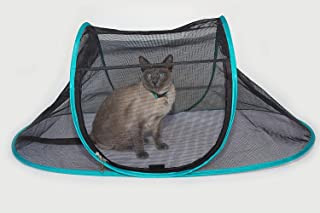 Cat Tents For Indoors
