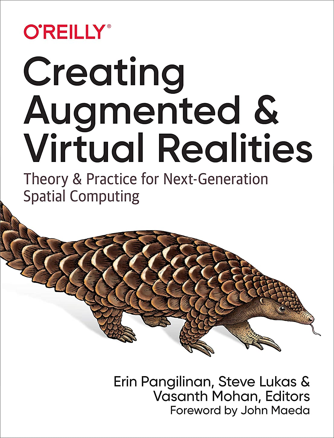 幅アートお肉Creating Augmented and Virtual Realities: Theory and Practice for Next-Generation Spatial Computing (English Edition)