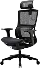 XUER Ergonomic Office Chair with Cozy Lumbar Support and Adjustable 3D Armrest, Computer..