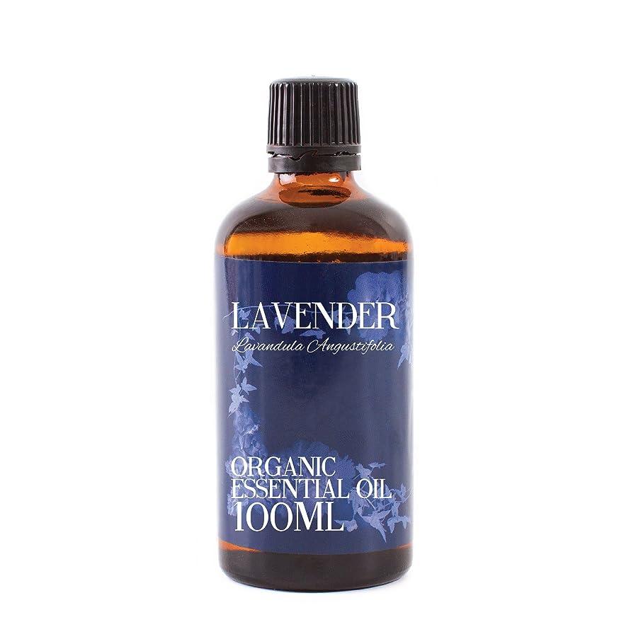 懸念慢性的寸法Mystic Moments | Lavender Organic Essential Oil - 100ml - 100% Pure