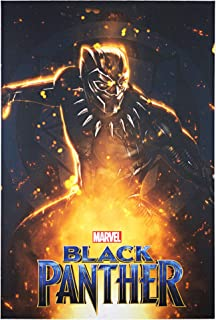 "Officially Licensed Marvel Comics Black Panther Movie Poster Wrapped Canvas Wall Art (36"" H x 24"" L)"