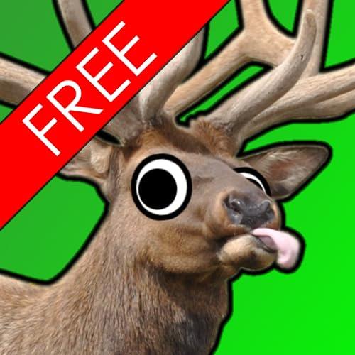 Elk Murder HD