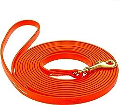 biothane dog leash