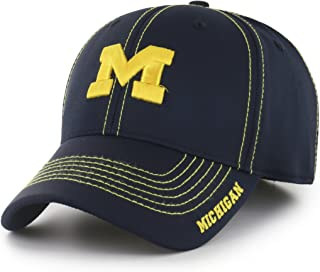 michigan wolverines flex fit hat