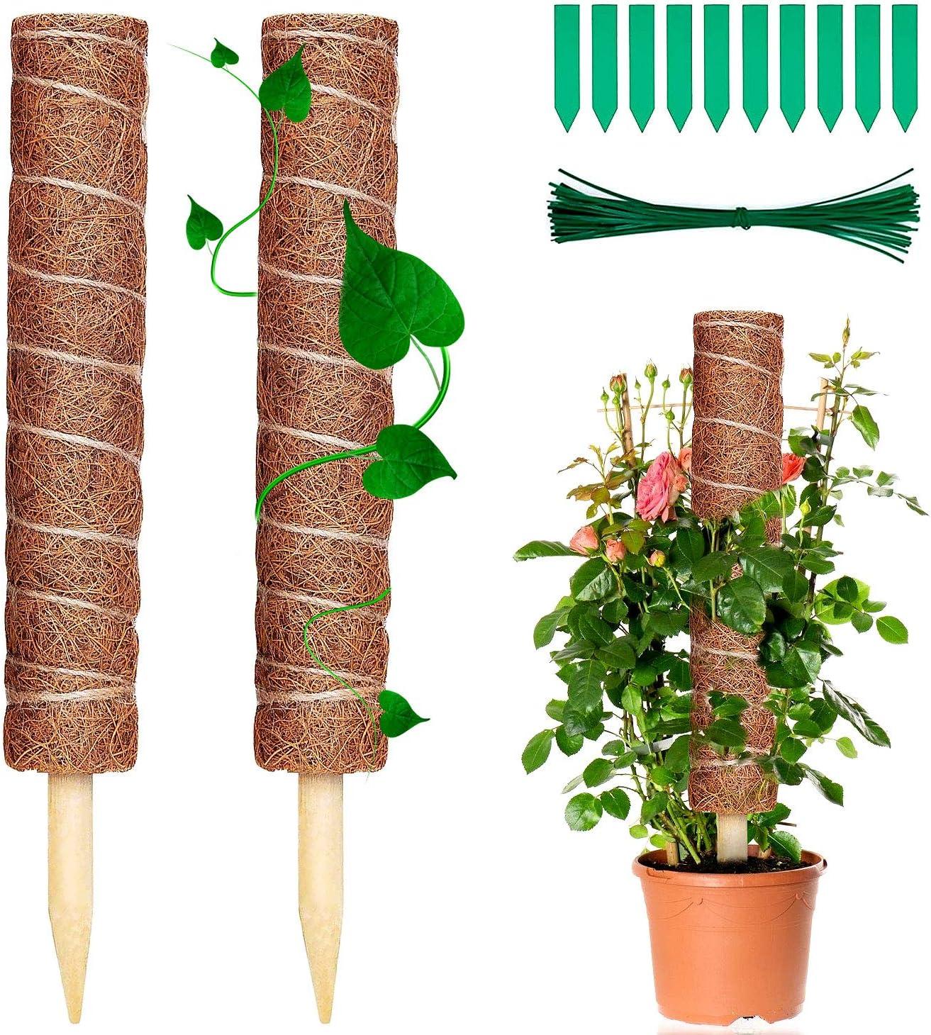 Soporte para Plantas t/ótem para Extensi/ón de Soporte para Plantas 12 Etiquetas de Plantas 2 Piezas Palo de Fibra de Coco 40 cm WELLXUNK/® Palo de Musgo T/ótem De Fibra De Coco
