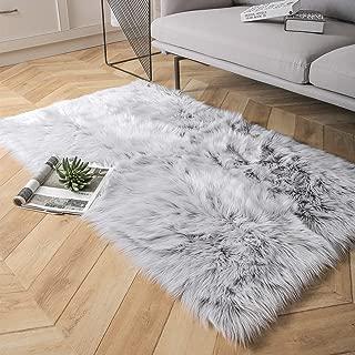 Ashler Faux Fur Area Rug Indoor Ultra Soft Fluffy Bedroom Floor Sofa Living Room Grey Rectangle 3 x 5 Feet