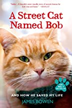 cat named bob sequel
