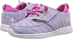 Sperry Kids - Baycoast Jr (Toddler/Little Kid)
