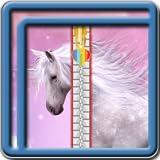 Zipper verrouillage écran Unicorn