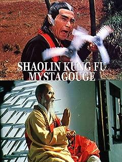 Shaolin Kung Fu Mystagogue