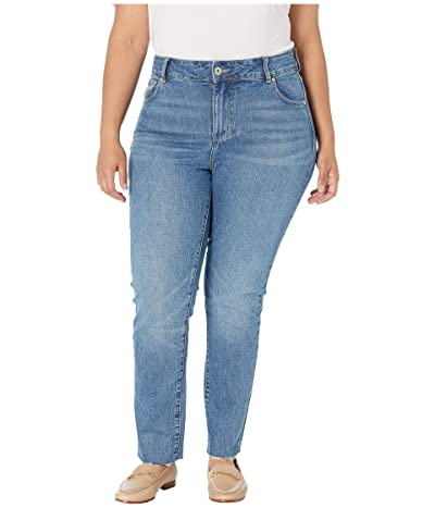 Jag Jeans Plus Size Stella High-Rise Straight Leg Jeans (Hudson Blue) Women