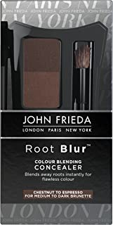 John Frieda Root Blur Color Blending Concealer, Chestnut to Espresso, Root Concealing Powder, with Mirror and Brush for Touch-ups, for Medium to Dark Brunettes