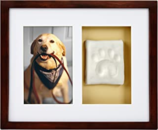 Pearhead Dog Or Cat Paw Prints Pet Wall Frame, Holiday Gift for Pet Owner, Great Gift for Pet Lover
