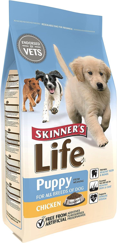 Silvikrin Pienso Life para Perros, de Skinners: Amazon.es ...