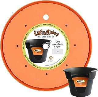 Bloem T6322-6 Living T6322 Up`s a Daisy Planter Insert, 12-Inch, Orange