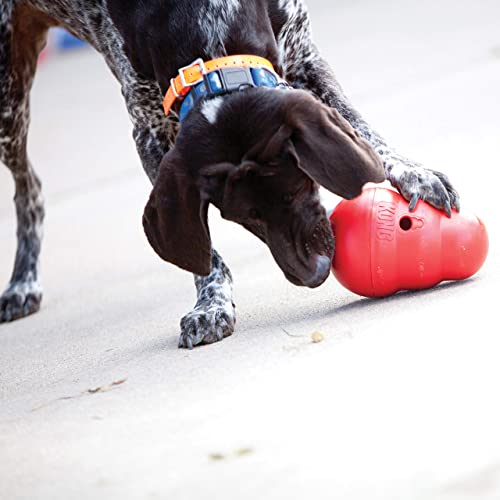 KONG Wobbler Interactive Dog Toy