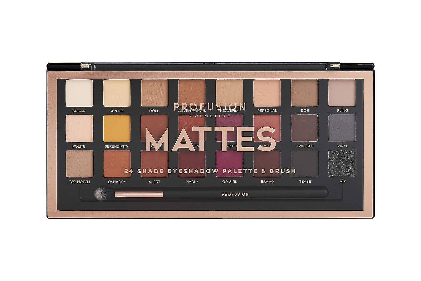 密度保全大脳Profusion Cosmetics プロの芸術プロアイシャドウパレット、Mattes