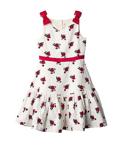 Janie and Jack Rose Print Dress (Toddler/Little Kids/Big Kids) (Multi) Girl