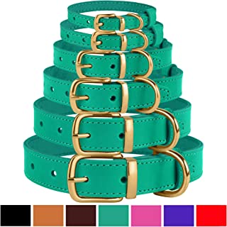 BronzeDog Leather Dog Collar Buckle Durable Pet Collars for Small Medium Large Dogs Puppy Cat Kitten Red Pink Purple Green Brown Black