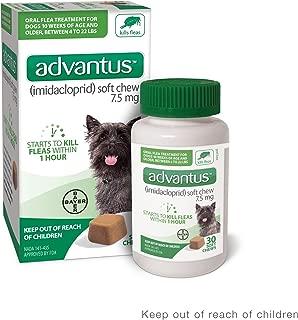 ADVANTUS CORPORATION Advantus Flea Soft Chews for Small Dogs 4-22 Pounds, 30 count