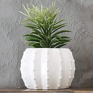 MyGift 6-Inch White Ceramic Cactus-Shaped Planter Pot