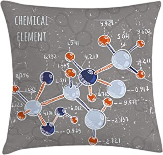 Ambesonne Grunge Throw Pillow Cushion Cover, Chemistry Laboratory with Display Formula Science Graphic Design Print, Decorative Square Accent Pillow Case, 18
