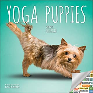 Yoga Puppies Calendar 2020 Set - Deluxe 2020 Yoga Puppies Mini Calendar with Over 100 Calendar Stickers (Puppies Gifts, Office Supplies)