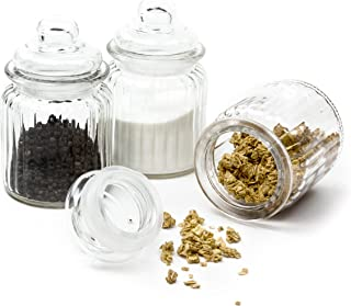 Ripple Food Storage Small Glass Jar Canister with Airtight Lid - 9.75 Ounce, 5.5