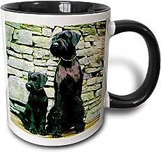 3dRose Giant Schnauzer - Two Tone Black Mug, 11oz (Mug_480_4)