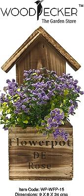 WoodPecker - The Garden Store House Design Wooden Flower Pot Planter (9x28x8 cm, Carbonised Wood)