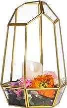 NCYP 9.8inches Glass Terrarium Planter Geometric Decor Box Centerpiece for Wedding Coffee Table Irregular Copper Handmade ...