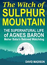 The Witch of Sulphur Mountain: The Supernatural Life of Agnes Baron, Meher Baba's Beloved Watchdog
