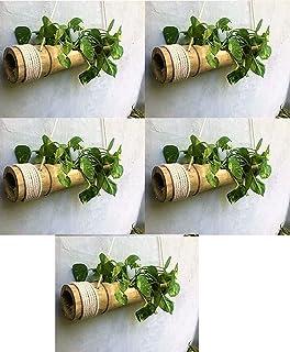 COIR GARDEN Hanging Planter 5 Pieces