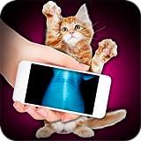 Xray Scanner Pet Cat Prank