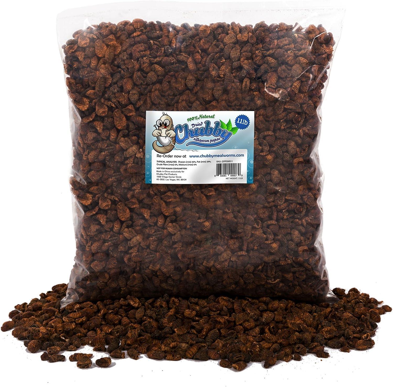 11lb Chubby Dried Silkworm Pupae for Koi, Fish, Reptiles, Terrapin 11lbs