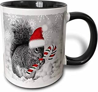 3dRose This Cute Christmas Squirrel Has A Candy Cane and A Santa Hat in The Snow Covered Winter Landscape. Two Tone Black Mug, 11 oz, Black/White