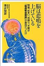 表紙: 脳は悲鳴を上げている 頭痛、めまい、耳鳴り、不眠は「脳過敏症候群」が原因だった!? (講談社+α新書)   清水俊彦