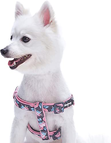 Blueberry Pet Soft & Comfy Step-in Rose Flower Prints Girly Padded Dog Harness, Chest Girth 42cm-54cm, Small, Adjusta...