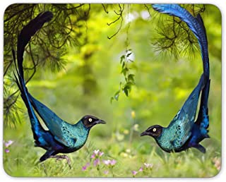 Two Love Birds Mouse pad, Natural Rubber Mouse Pad, Quality Creative Wrist-Protected Wristbands Personalized Desk, Mouse Pad (9.5 inch x 7.9 inch)
