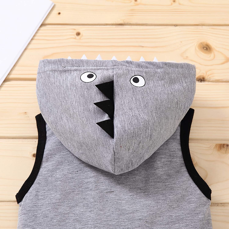 Toddler Infant Baby Boy Summer Outfits Cartoon Sleeveless Hoodies Sweartshirt Jogger Shorts Clothes Set