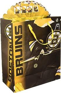 Turner Licensing Sport Boston Bruins Large Gogo Gift Bag (8931032)