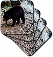 3dRose CST_63336_1 A Black Bear in a Wildlife Center-Soft Coasters, Set of 4