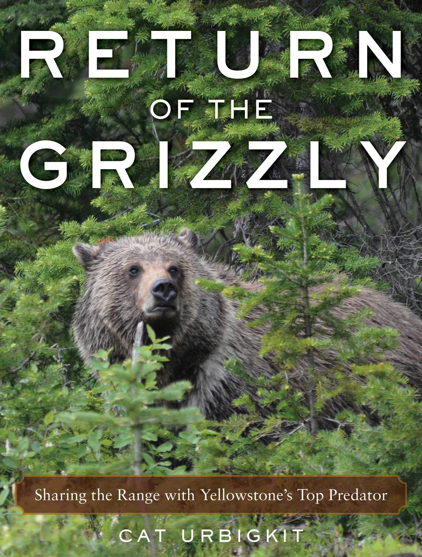 Download Return Of The Grizzly: Sharing The Range With Yellowstone's Top Predator 