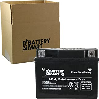 Replacement YTX4L-BS AGM Maintenance Free Battery for Powersports, Motorcycle, Scooter, ATV
