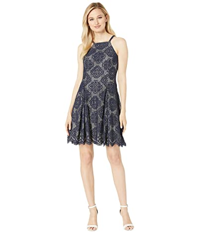 Vince Camuto Halter Neck Lace Fit and Flare Dress (Navy) Women